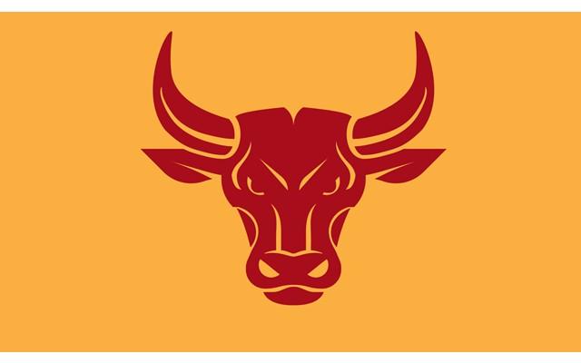 История корриды и боев с быками