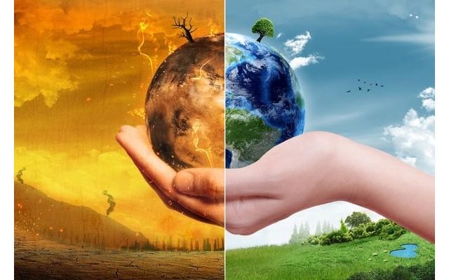 Торревьеха отпразднует Всемирный день окружающей среды