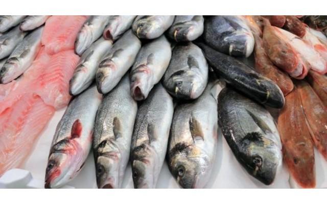 Испании придется импортировать рыбу