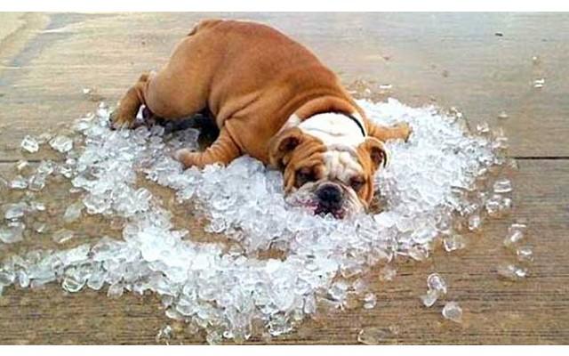 Как «охладиться» этим летом в Испании