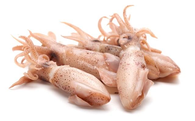 Виды кальмаров. Чем отличается la pota от el calamar