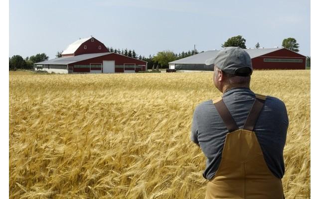 Возможности развития бизнеса в сельском хозяйстве привлекают молодых людей