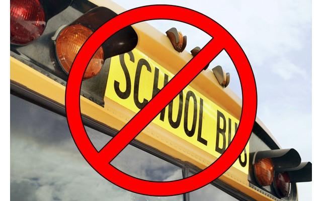 Правительственный заказ на бесплатный школьный транспорт в Торревьехе сократится на 25%