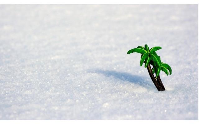 Снег в Торревьехе и окрестностях 18 января 2017!