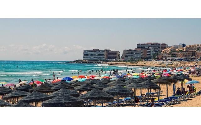 Пять пляжей Торревьехи отмечены Голубым Флагом качества