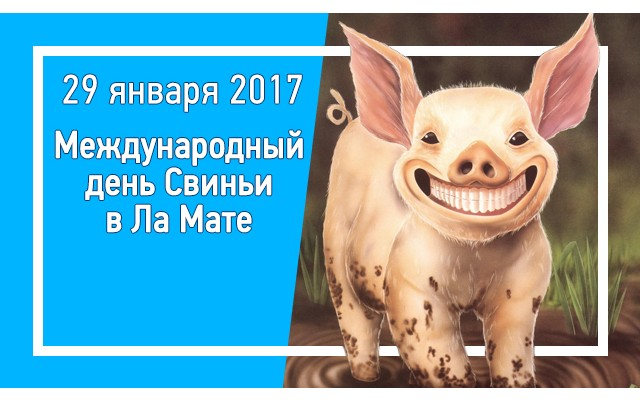 Международный день Свиньи 2017 в Ла Мате