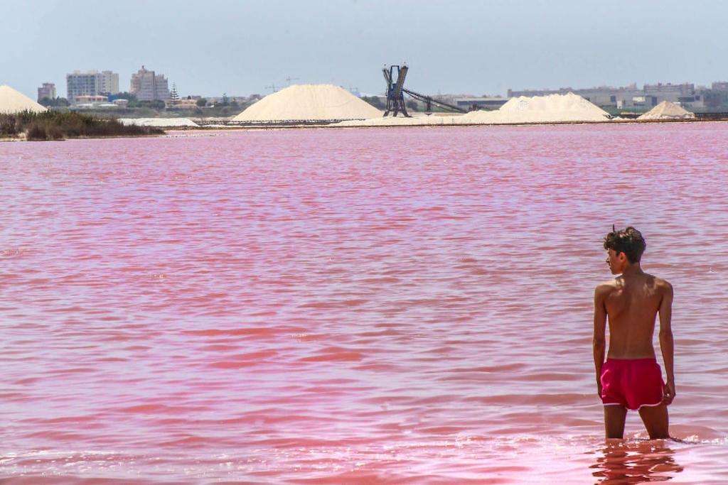 Знаменитая лагуна в Торревьехе потеряла свой розовый цвет