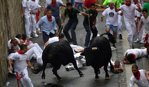 Забеги с быками в Валенсийском сообществе пройдут при соблюдении ряда условий