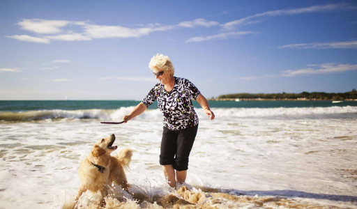 """15 """"собачьих"""" пляжей Валенсийского сообщества"""
