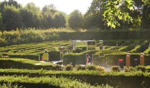 Рядом с Бенидормом может появиться «зеленый лабиринт»